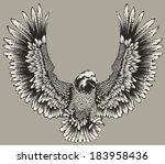 animal,arms,bird,claw,eagle,falcon,feather,flying,hawk,heraldic,icon,illustration,image,isolated,mascot