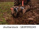 Tilling And Prepare Soil For...