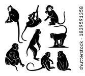 Set Of Silhouette Monkey Vector ...