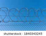 Meshed Rath Fence And Barb Wire