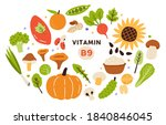 collection of vitamin b9... | Shutterstock .eps vector #1840846045