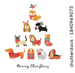 Collection Of Christmas Dogs ...