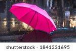 Pink Umbrella After The Rain....