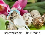 quail eggs   one of them with... | Shutterstock . vector #184129046