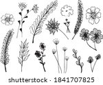 big set of hand drawn floral... | Shutterstock .eps vector #1841707825