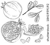 set of hand drawn illustrations ... | Shutterstock . vector #1841959192