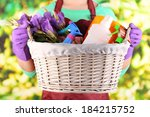 Housewife Holding Basket With...