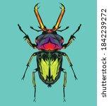 vector beetle illustration t...   Shutterstock .eps vector #1842239272