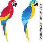 Flet Parrot Macaw On White...