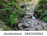 mountain stream in the altai... | Shutterstock . vector #1842443062