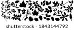silhouettes drawings of forest... | Shutterstock .eps vector #1843144792