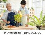 Asian Retired Elderly  Cute Boy ...