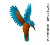 Gradient Kingfisher Bird Vector ...
