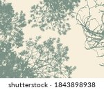 pine tree and branches...   Shutterstock .eps vector #1843898938