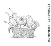 engraving vegetables in basket... | Shutterstock .eps vector #1843955335