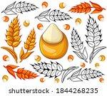 hand drawn oat ears set ...