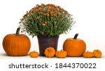 Autumn Background. Autumn...