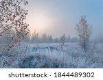 November Dreamy Frosty Morning. ...