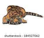 Sleeping Tiger Drawing