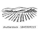 Rural Landscape  Vineyard  Farm ...