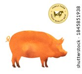 Pig  Pork Icon Or Sign ...