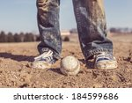 baseball and sneakers in a...   Shutterstock . vector #184599686