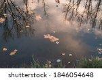 Autumn Landscape By The River....