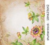 Watercolor Botanic Illustration ...