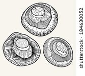 mushrooms set | Shutterstock .eps vector #184630052