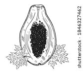 Illustration Of Papaya In...