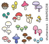 a variety of fancy mushrooms ... | Shutterstock .eps vector #1846903258
