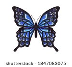 butterfly isolated on a white... | Shutterstock .eps vector #1847083075