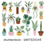 home potted plants. houseplants ... | Shutterstock . vector #1847325145