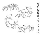 Vector Vintage Crab Drawing....