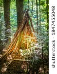 A Teepee Made From Tree...