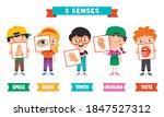 five senses concept with human... | Shutterstock .eps vector #1847527312