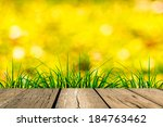 spring green grass with  bokeh... | Shutterstock . vector #184763462