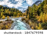 Autumn Mountain Forest River...