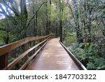 Wooden Bridge  The Path Leadin...