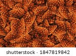 Top Vieve Pine Cones Background