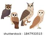 set of owl isolated on white... | Shutterstock .eps vector #1847933515