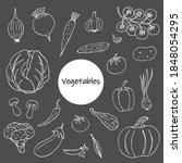 set of vegetable doodles on a... | Shutterstock .eps vector #1848054295