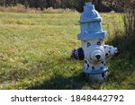 Blue And White Fire Hydrant...