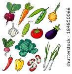 fresh  organic vegetables. | Shutterstock .eps vector #184850066