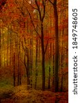 Natural Fall Background  Autumn ...
