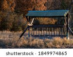 Feeder For Deer And Stags In...