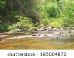 river in deep forest  river in... | Shutterstock . vector #185004872