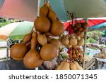 Dried Calabash Fruit For Water...