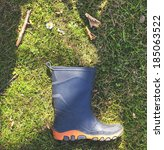 One rubber boot on grass with daisy and some withered piece of wood. - stock photo
