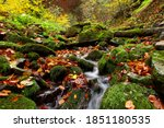 A Stream And Waterfall In The...